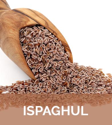 L'Ispaghul