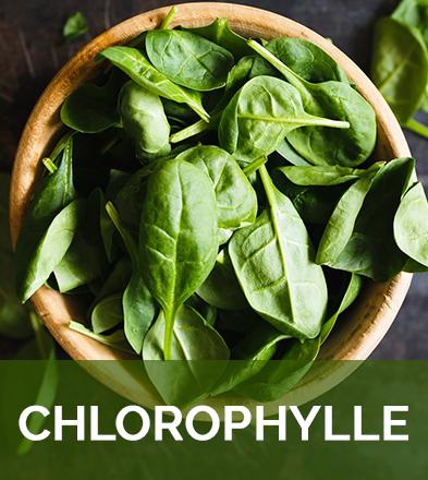 Chlorophylle biophenix